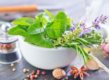 Herb and aroma spice Royalty Free Stock Images