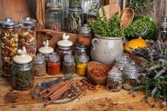herb basilów części rosnącej żywnościowego przyprawy zdjęcie stock