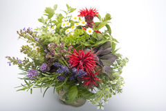 Herb bouquet. With chamomile, sage and parsley in vase Royalty Free Stock Images