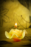 Herb candle Royalty Free Stock Image