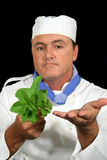 Herb Chef 2 Royalty Free Stock Photography