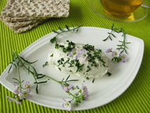 Herb curd with cuckoo flower Stock Images
