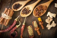herb czosnków bay kardamonowi liści pieprzowe spice waniliowe rosemary soli Zdjęcia Stock