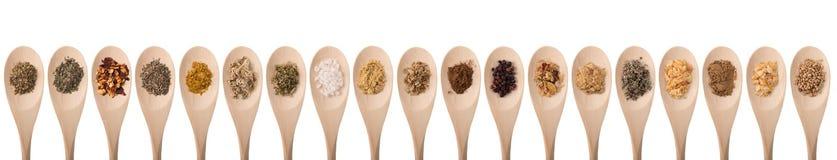 herb czosnków bay kardamonowi liści pieprzowe spice waniliowe rosemary soli Obrazy Stock
