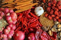 herb czosnków bay kardamonowi liści pieprzowe spice waniliowe rosemary soli Zdjęcie Royalty Free