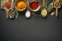 herb czosnków bay kardamonowi liści pieprzowe spice waniliowe rosemary soli Zdjęcia Royalty Free
