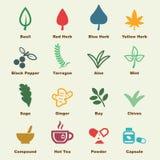 Herb elements Stock Photo