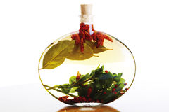 Herb-flavored oil Stock Photography