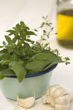 Herb-flavored oil and various herbs in bowl Royalty Free Stock Photo