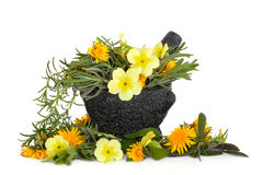 Herb and Flower Beauty. Lavender, rosemary and sage herb leaves with viola, primrose and dandelion flowers in a granite mortar with pestle, over white background royalty free stock images