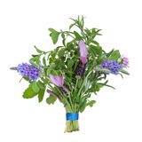 Herb Flower Posy. Lavender, thyme and chive flowers with rosemary and lemon balm herb leaf sprigs tied in a posy isolated over white background Royalty Free Stock Images