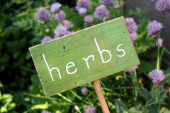 Herb Garden. A little handmade wood sign distinguishes the herb garden Royalty Free Stock Photo