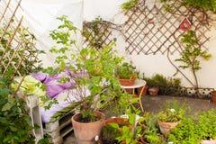 Herb Garden Fotografia de Stock
