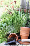 Herb Gardening Photo libre de droits