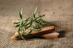 Herb gardening. Rosemary with herb garden markers royalty free stock images