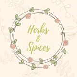 Herb hand drawn card Stock Images