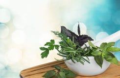Herb. Al mortar green summer thyme melissa stock photos