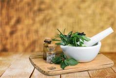 Herb. Al mortar green summer thyme melissa royalty free stock photography