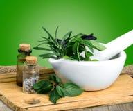 Herb. Al mortar green summer thyme melissa stock image