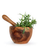 Herb Hyssop. Hyssop herb leaves in an olive wood mortar with pestle over white background royalty free stock images