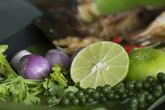 Herb ingredient of Tom Yum spicy soup Traditional Thai food cuis Royalty Free Stock Photo