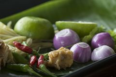 Herb ingredient of Tom Yum spicy soup Traditional Thai food cuis Stock Image