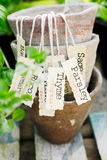 Herb label Royalty Free Stock Image