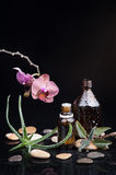 Herb leaf and Orchid with an aromatherapy essential oil Stock Images