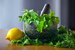 Herb leaf selection in a granite mortar with pestle with lemon Stock Images