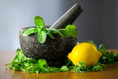 Herb leaf selection in a granite mortar with pestle with lemon Royalty Free Stock Image