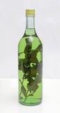 Herb Liqueur médico Imagem de Stock Royalty Free
