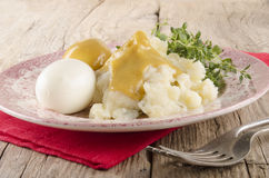 Herb mashed potatoes with mustard eggs Stock Image