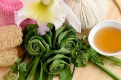Herb Mask fresco cremoso - Pandanus del abrigo Palma, Ivy Gourd y miel, balneario con los ingredientes naturales de Tailandia Foto de archivo libre de regalías