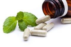 Herb medicine Royalty Free Stock Photos