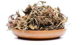 Herb medicine Diding or Herba Violae rotating and pause. Side view herb medicine Diding or Herba Violae rotating and pause stock video