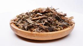 Herb medicine Pugongying or Taraxaci Herba or Mongolian Dandelion Herb rotating and pause. Side view herb medicine Pugongying or Taraxaci Herba or Mongolian stock footage
