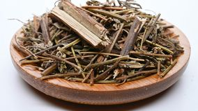 Herb medicine XiangRu or Moslae Herba or Chinese Mosla Herb rotate and pause. Side view herb medicine XiangRu or Moslae Herba or Chinese Mosla Herb rotate and stock video footage
