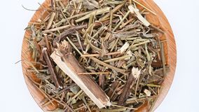 Herb medicine XiangRu or Moslae Herba or Chinese Mosla Herb rotate and pause. Top view herb medicine XiangRu or Moslae Herba or Chinese Mosla Herb rotate and stock footage
