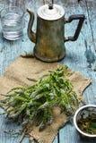 Herb mint tea Stock Image