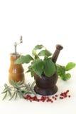 Herb Mix Fotografia Stock