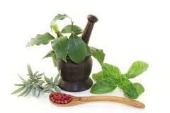 Herb Mix Immagini Stock