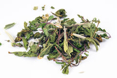 Herb mix in white background Stock Photo