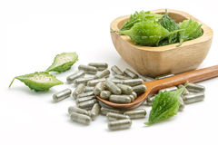 Herb pills with bitter gourd ,homeopathic medicine on white back Royalty Free Stock Photo