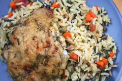 Herb Roasted Chicken. On a Bed of Rice Royalty Free Stock Images