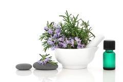 herb rosemary spa επεξεργασία Στοκ Εικόνες