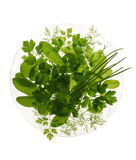 Herb salad. Glass plate with various herbs isolated on white Royalty Free Stock Images