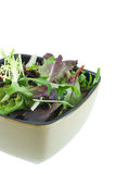 Herb Salad. In bowl isolated on white Royalty Free Stock Photos