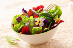 Herb salad with nasturtium flowers Stock Photography