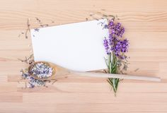 Herbal salt with rosemary and lavender. Herb salt with rosemary, lavender and white copy space on a wooden background Stock Image