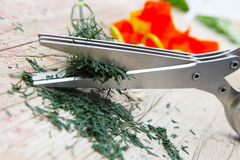 Herb Scissors cut dill Stock Photos